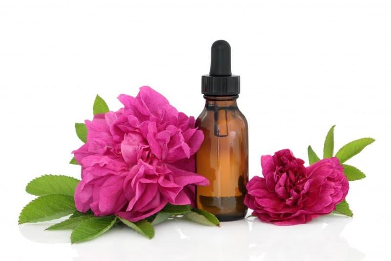 terapia florală Bach